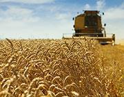 assurance  climatique récoltes