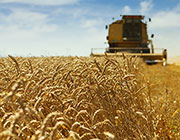 Assurance Multirisque climatique récoltes