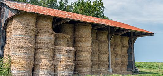 Un fourrage bien stocké limite les risques d'incendie par fermentation